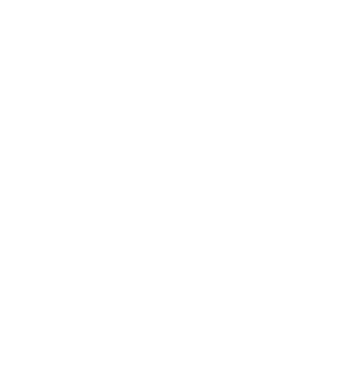 Eviva Weddings